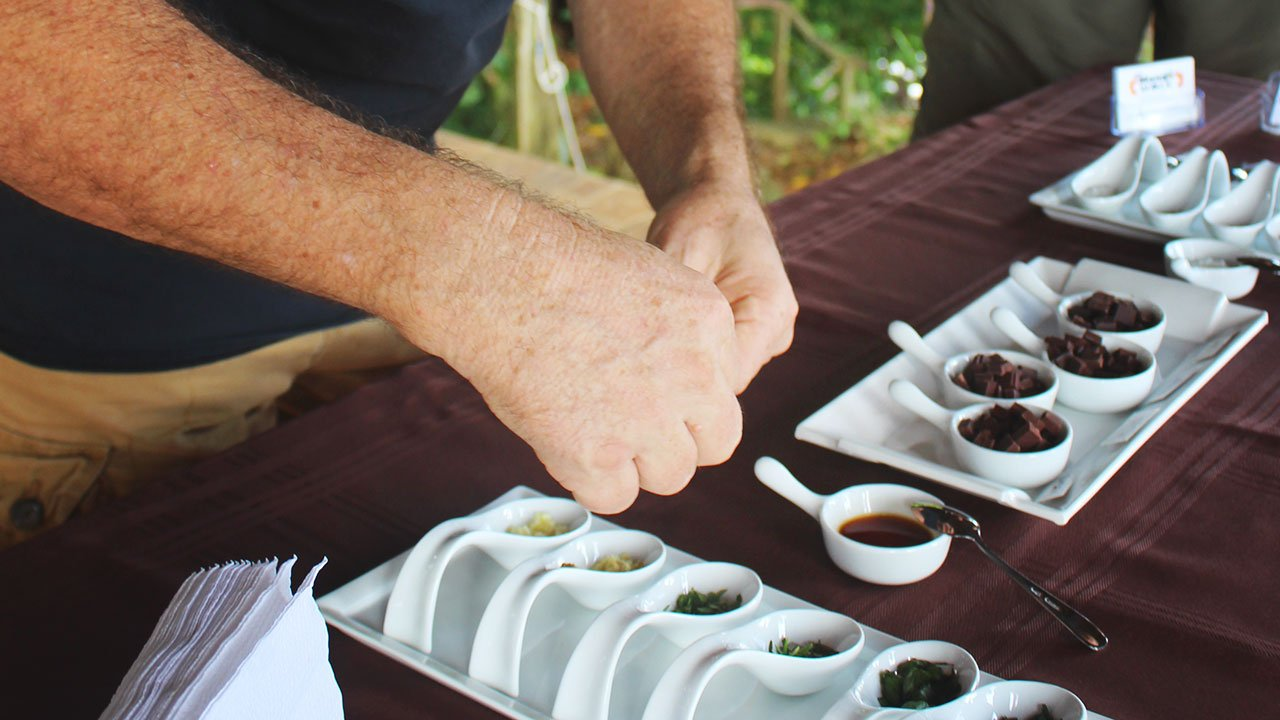 Chocolate tour Costa Rica